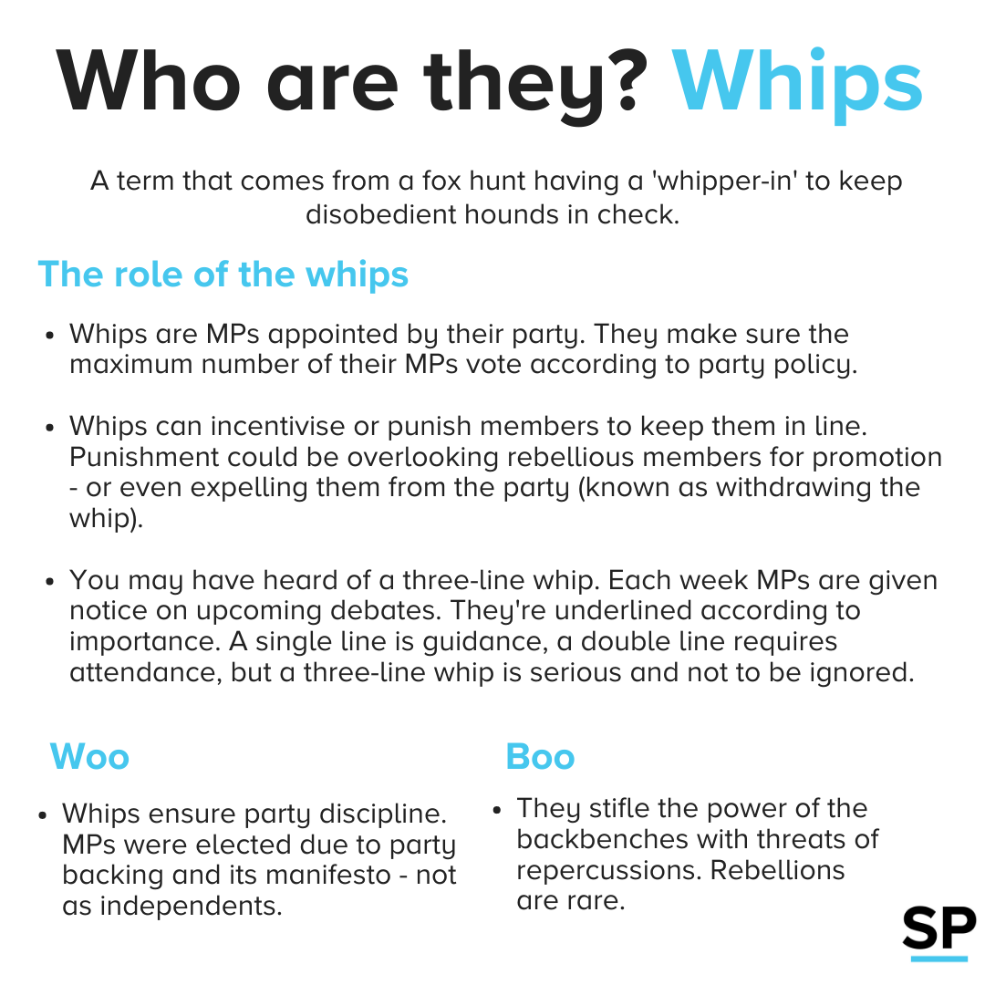 Describes who whips are in Parliament