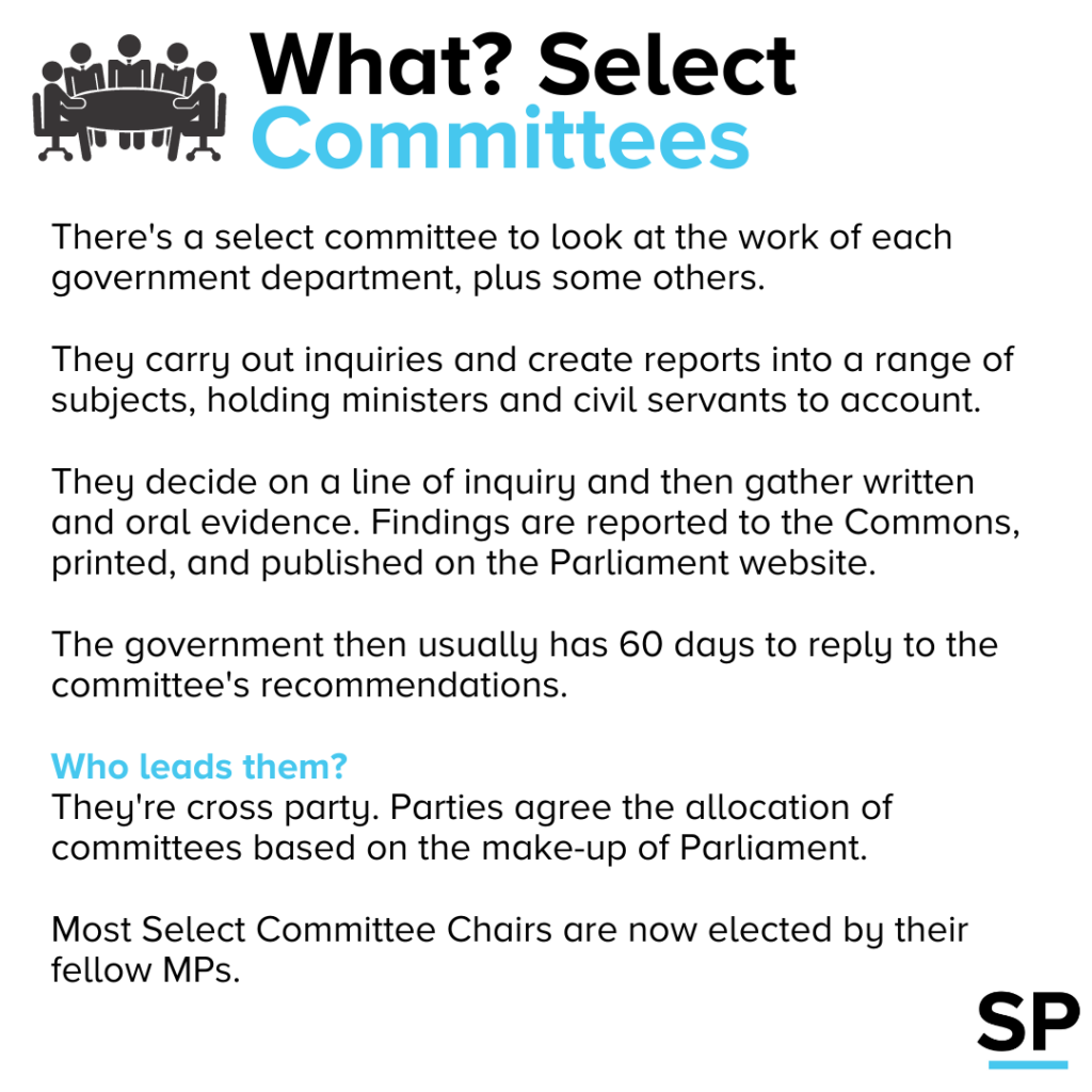 Explaining the role of select committees